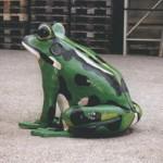 grenouille2