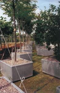 horticulture_redimensionner